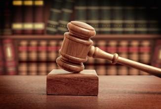 Controllo dei cinghiali tra giustizia e riforme