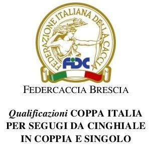 Logo Coppa Italia Cinghiale