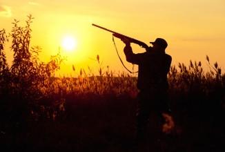 Tra tsunami politico e tutela della caccia
