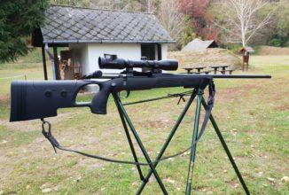 Tipologie di armi per la caccia agli ungulati